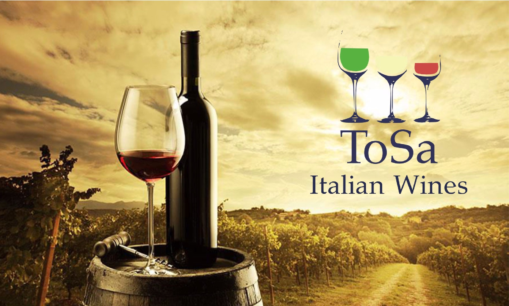 The Italian wines of ToSa
